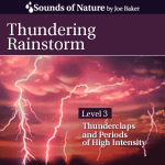Thundering Rainstorm Sound Recording CD Cover