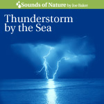 Thunderstorm by the Sea Audio Sound Recording CD Cover