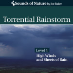Torrential Rainstorm CD Cover by The Sounds of Nature by Joe Baker