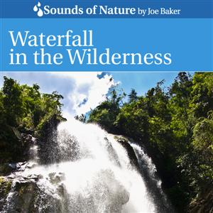 Waterfall in the Wilderness CD Cover by The Sounds of Nature by Joe Baker