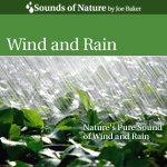 Wind and Rain CD Cover by The Sounds of Nature by Joe Baker