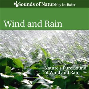 Wind and Rain CD by The Sounds of Nature by Joe Baker